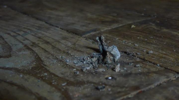 Fallen ashes on wooden floor at Diamante's Cigar Lounge, Brooklyn, N.Y.